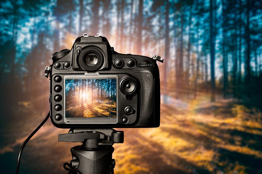 DSLR camera purchase advice