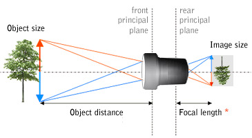 Fixed focal length vs. Zoom?