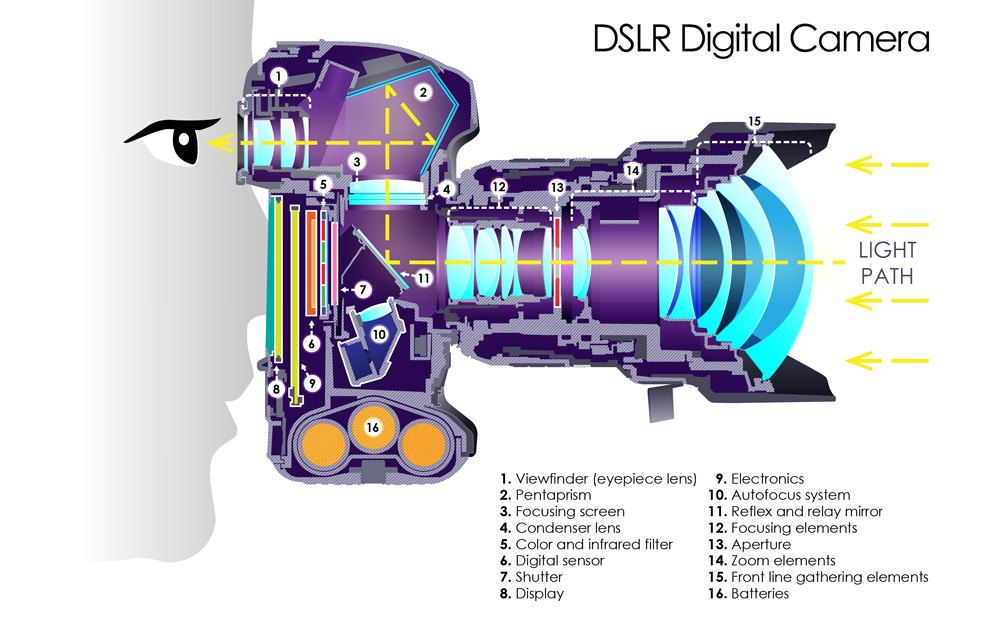 Do you know what is inside Your DSLR